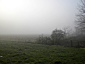 a10 Field in Fog