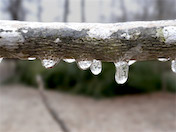 a60 Icicles